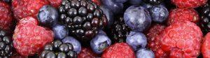 Berries - Lynden